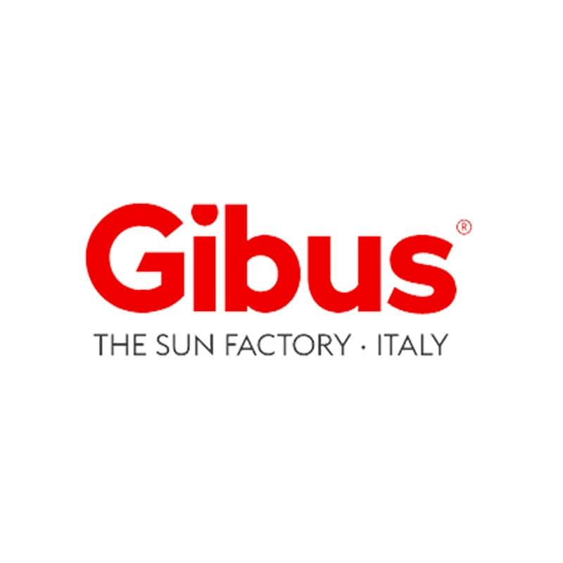 Gibus, l'andamento dei ricavi nel primo semestre 2020