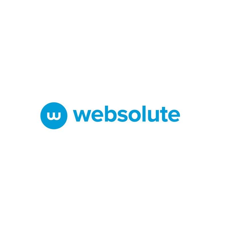 Websolute, i conti del 2020