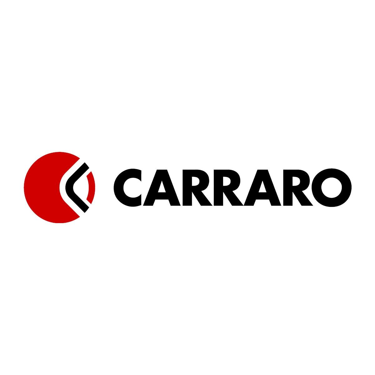 Carraro: ora è il momento in cui bisogna investire di più (Corriere della Sera)