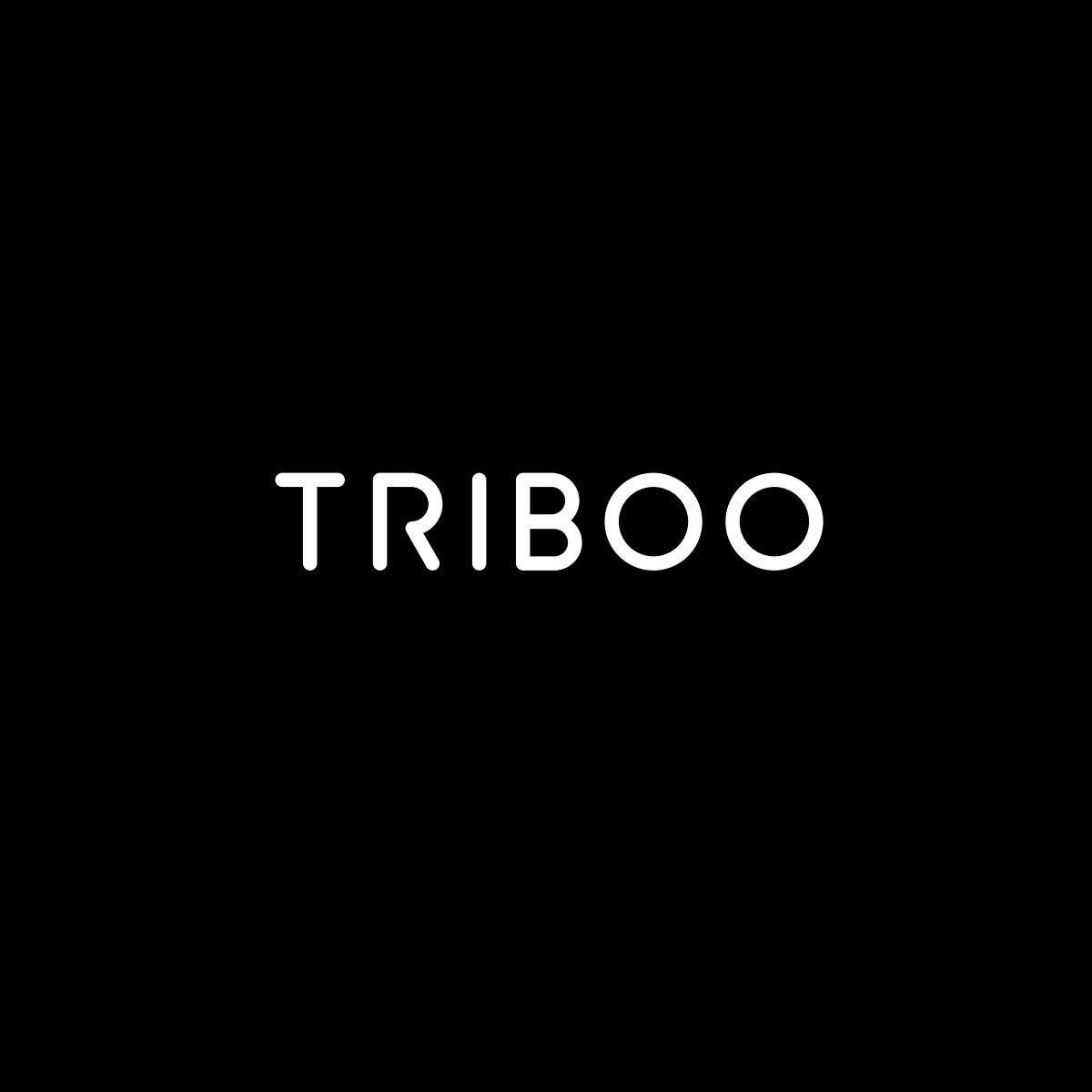 Triboo, approvato il budget 2021