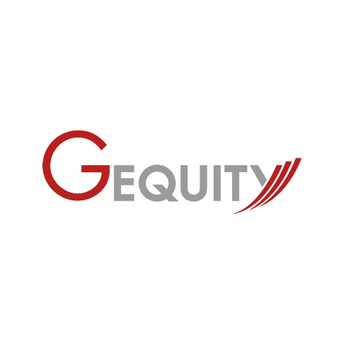 GEquity, i conti del 2020